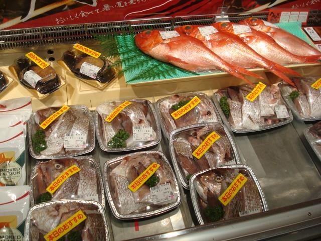 Fish in Narita Market